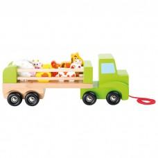 Animal Transporter Lorry